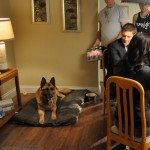 Gage still acting like a innocent family dog - on set with Supernatural