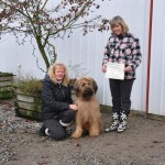 Briard Rafi earns her Canine Good Neighbour award