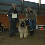 Tucker earns his Canine Good Neighbour