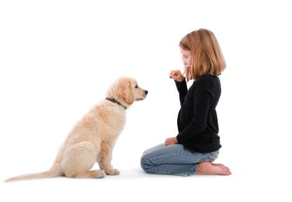 puppy being trained to sit by a child