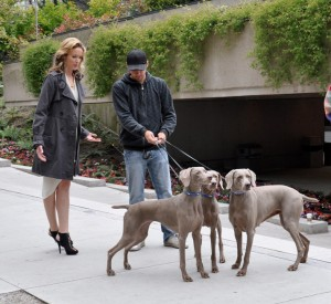 Ryan showing the actress how to hold the leash - check out the shoes she has to wear for this