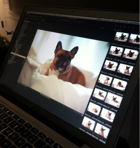 Frenchie Ruca gets screen time on Coldwell Banker commercial