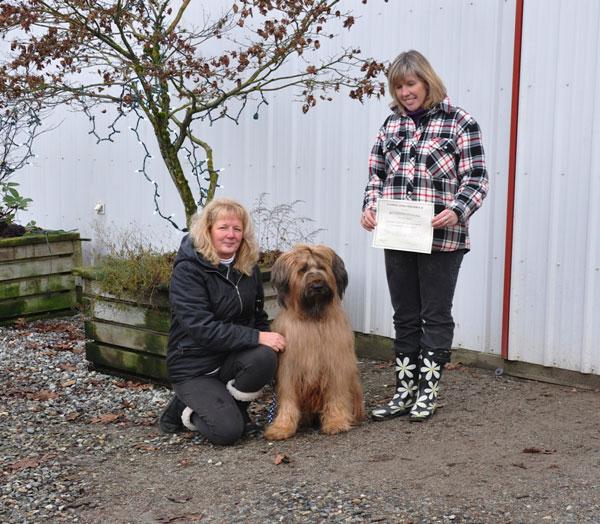 Briard Rafi earns her Canine Good Neighbour award